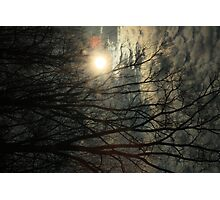 Cloud Tree Photographic Print