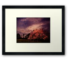 Miraculous Change Framed Print