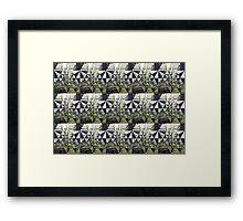 Tessa 7 Framed Print