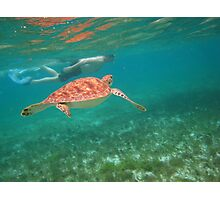 swimming with turtles Photographic Print