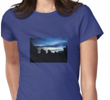 Nature's Own Paintbrush Womens Fitted T-Shirt