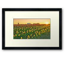 At The Crack Of Dawn Framed Print