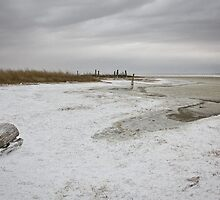 Snow or Salt? by CormacEby