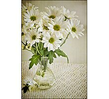 Simply Daisies Photographic Print