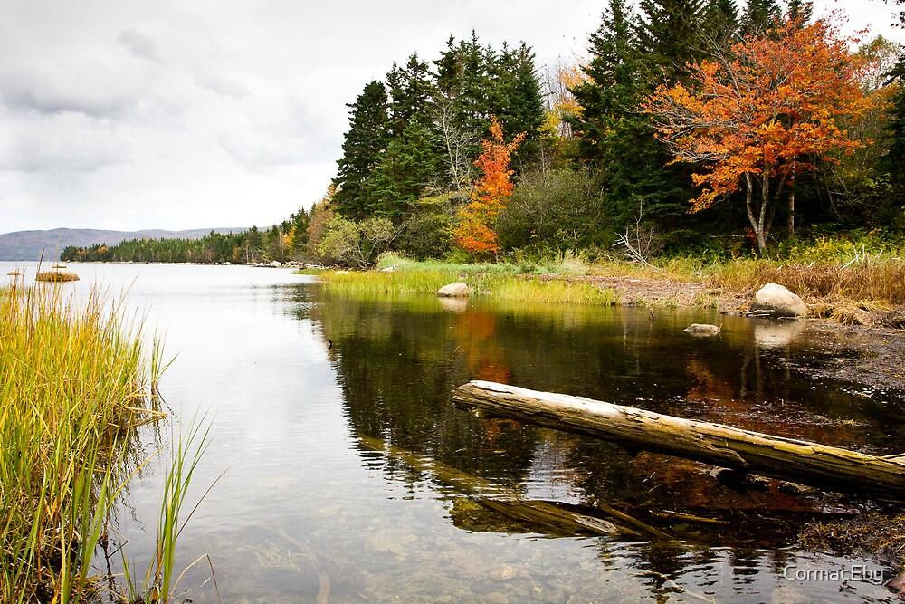 Atlantic Autumn by CormacEby