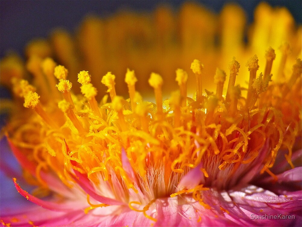 Golden Crown by SunshineKaren