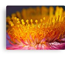 Golden Crown Canvas Print