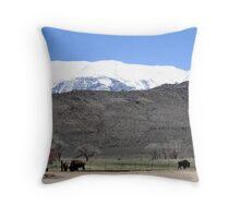 Buffalo In Benton Throw Pillow