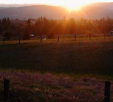 Farmland Sundown by CormacEby
