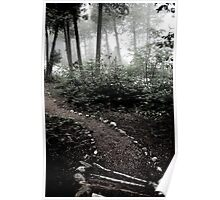 Path Poster