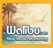 Hire Web Designers, Developers and Internet Marketing Expert by walibuseo