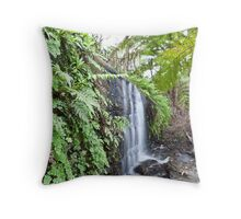 7th February 2012 Throw Pillow