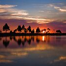 just another sunset by Lisa  Kenny