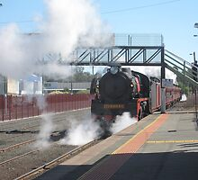 R Class Loco at Echuca Station by glennmp