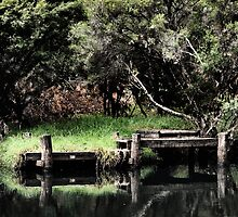 Forgotten Jetty by Robyn Forbes