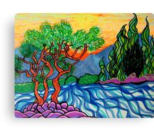 Olive and Cypress trees by the river Canvas Print