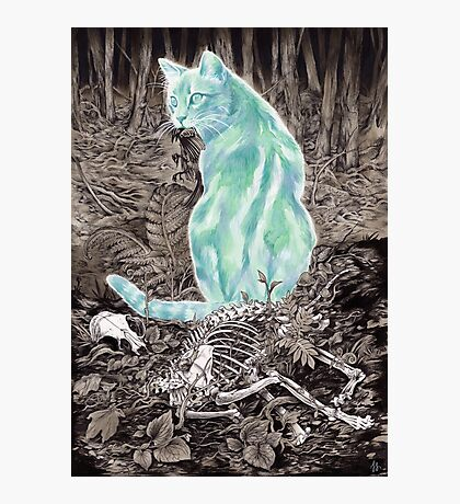Ghost Cat Prowls Forever Photographic Print