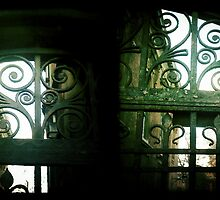 Cambridge Collection: Gates by Sybille Sterk