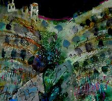 olive trees and casa, Spain by Myra Gallicker