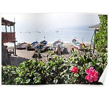 Papudo Bay Poster