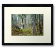 The Moss Covered Forest Framed Print
