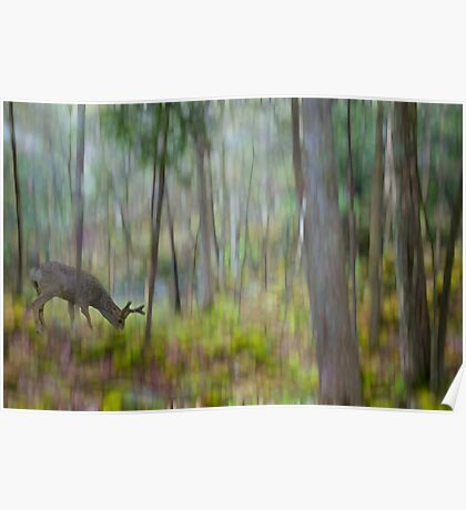 The Moss Covered Forest Poster