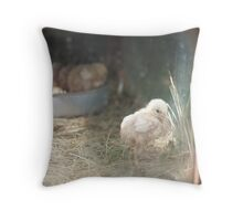 The lonely chick Throw Pillow