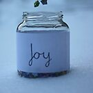 J is for Joy by theletterbox