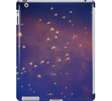 ©HCS In Da Cloud iPad Case/Skin