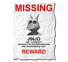 Missing Jinjo Photographic Print
