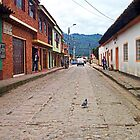 A pigeon taking a walk by Maria  Gonzalez