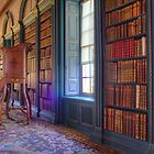 Wimpole hall Library.....2 by Stacey  Purkiss