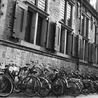 bikes in line by HelliBerry