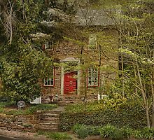 The Mill House by Pat Abbott