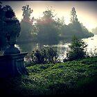 Hyde Park by Benedikt Amrhein