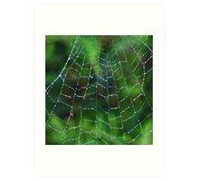 Web jewellery Art Print