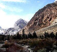 Sierra Springtime by marilyn diaz