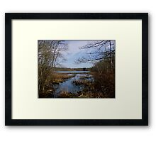 Pond Meadow Park... Framed Print