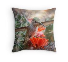Balancing Act  Throw Pillow