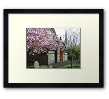 Resting Beneath The Cherry Blossoms Framed Print