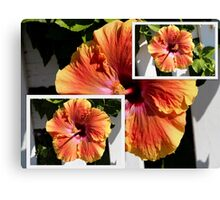 Orange Single Hibiscus Collage Canvas Print