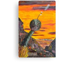 Yucca Viewing the Desert Sunset Canvas Print