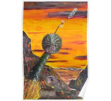 Yucca Viewing the Desert Sunset Poster