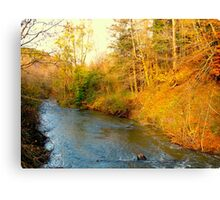 River chase Canvas Print