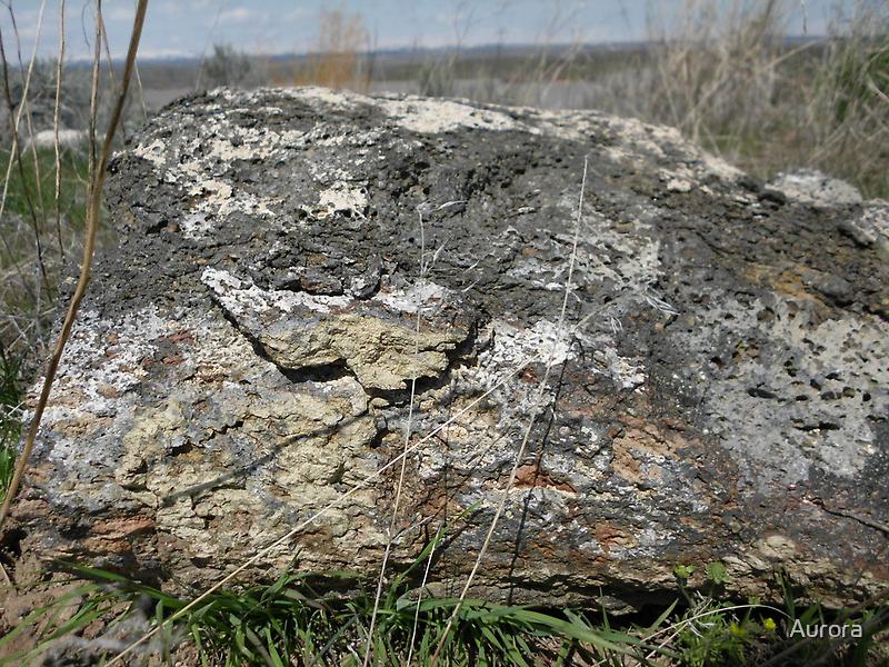 Old basalt rock by Aurora