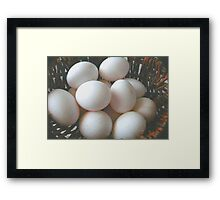 All My Eggs In One Basket Framed Print