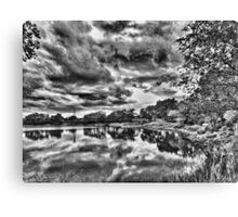 """Reflection"" Canvas Print"