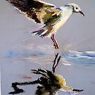 Take off  by Shirlroma