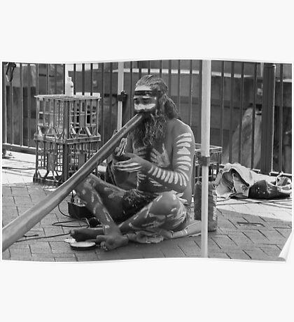 Aborigine Playing Didgeridoo  Poster