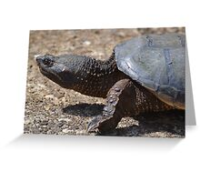 Moving At The Speed Of Turtle. Greeting Card